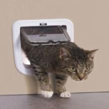 Дверца для кошек магнитная 4 позиции, клапан 17 х 17,5 см .,белая  S3603
